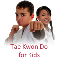 tae kwon do newcastle maitland lake macquarie martial arts